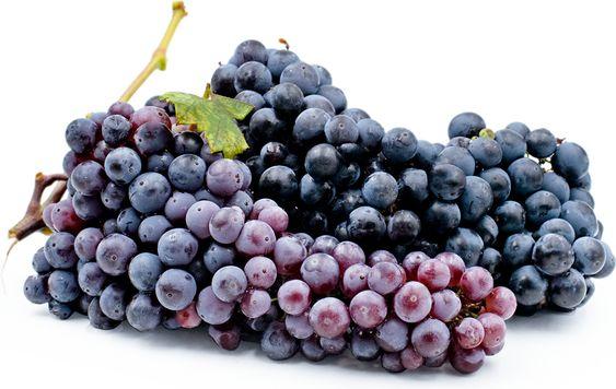 zinfandel-grapes